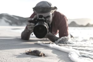 Image of a Photographer Taking an Contest-Winning Picture