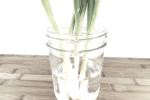 how to store green onions