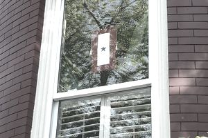 US service flag hanging in window