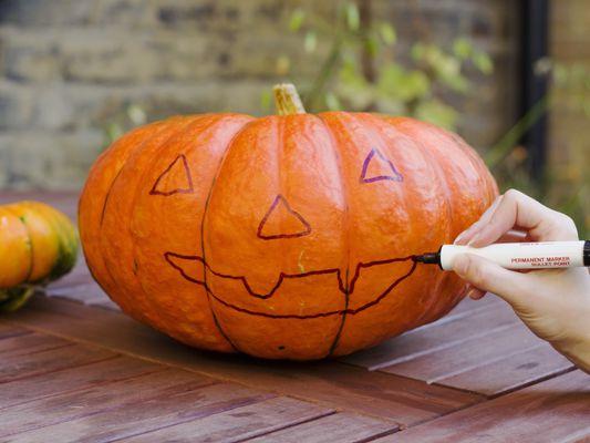 Halloween Jackolantern before carving