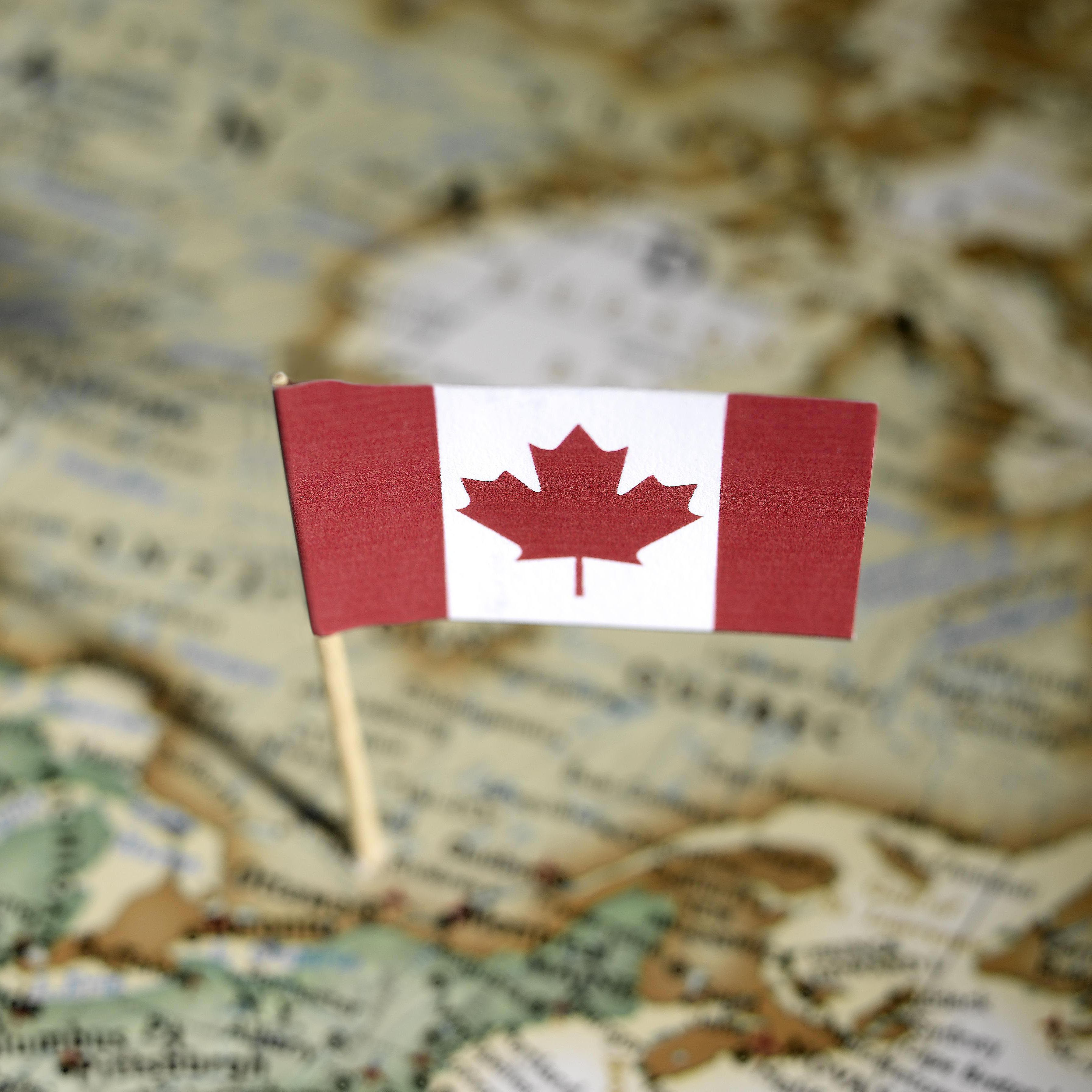 The Best Canadian Coupon Sites On The Web