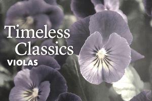 The Bluestone Perennials Spring 2018 catalog