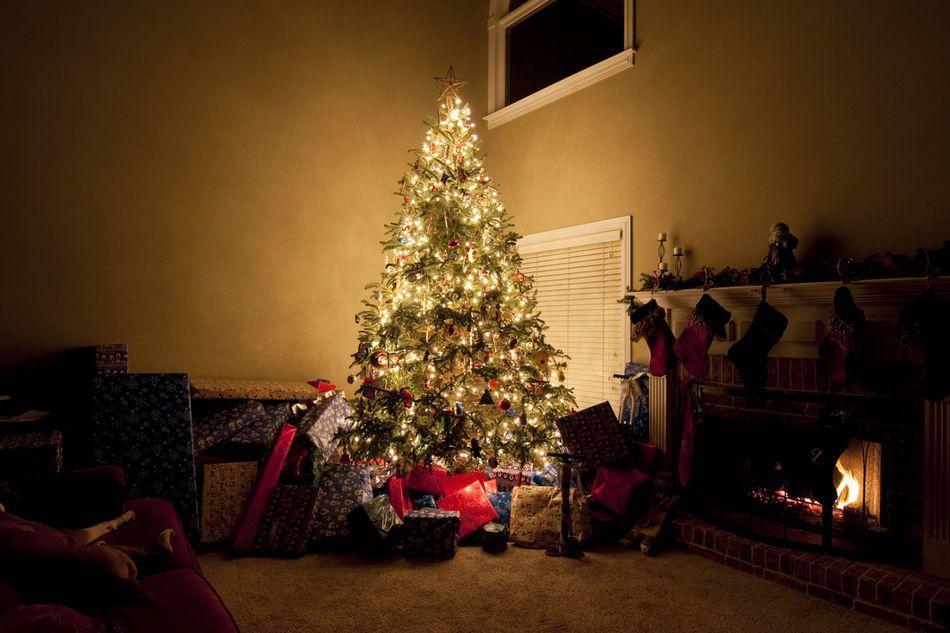 Christmas tree in dark room