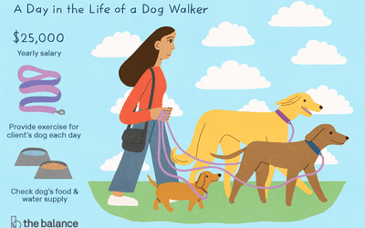 The Benefits Of Dog Walking Jobs For Kids