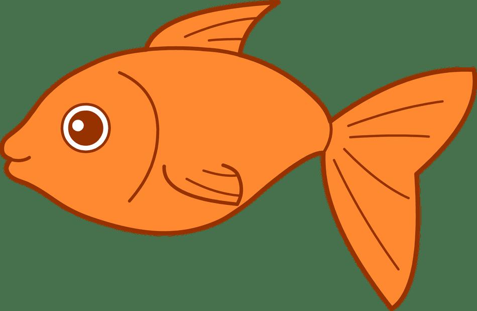 An illustration of an orange fish